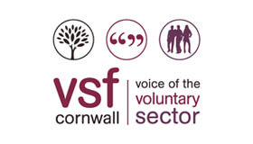 Voluntary Sector Forum logo